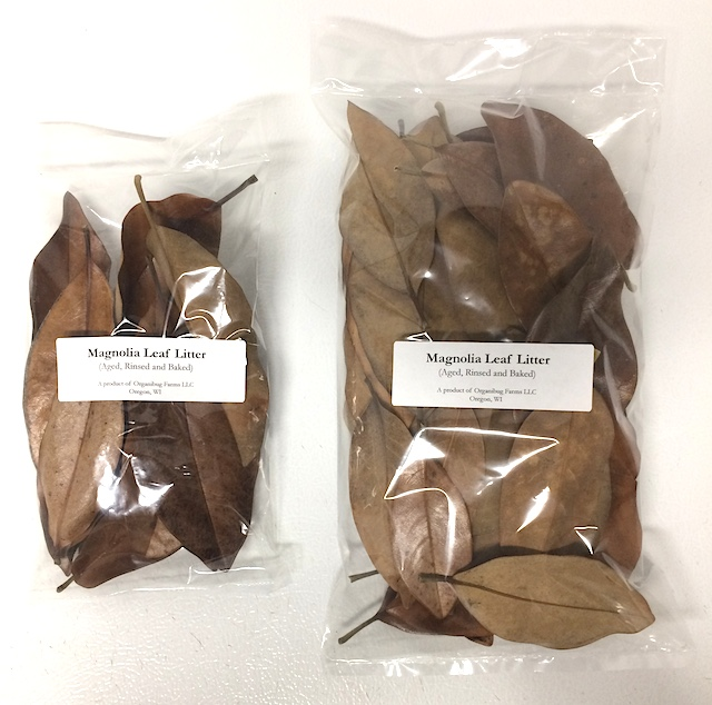 Z Out Of Stock Magnolia Leaf Litter Approx Quart Bag
