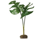 EXO TERRA SMART PHILODENDRON