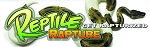 Reptile Rapture Bumper Sticker - Pied ball python