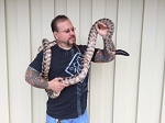 z OUT OF STOCK - CB BLACKHEADED PYTHON - Aspidites melanocephalus