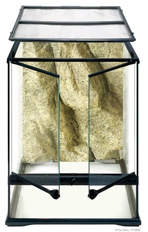 "EXO-TERRA GLASS TERRARIUMS - SMALL TALL - 18"" x 18"" x 24"""