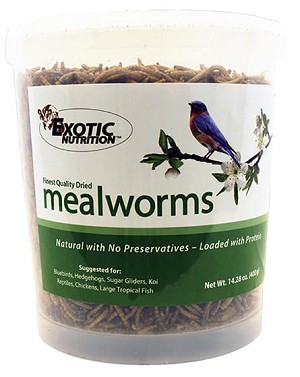 DRIED MEALWORMS - EXOTIC NUTRITION - 7.14 oz tub