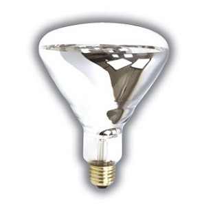 Reptile Mercury Vapor Bulb 100 Watt