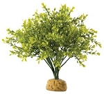OUT OF STOCK - EXO TERRA BOXWOOD