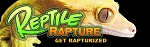 Reptile Rapture Bumper Sticker - Crested Gecko