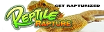 Reptile Rapture Bumper Sticker - Beardie white