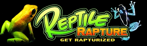 OUT OF STOCK - Reptile Rapture Bumper Sticker - dart frog