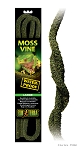 OUT OF STOCK - EXO TERRA MOSS VINE - large