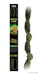 OUT OF STOCK - EXO TERRA MOSS VINE - small