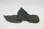 MULBERRY LEAF LITTER - 20 pieces/pack