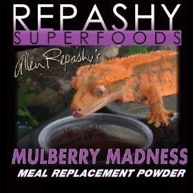 OUT OF STOCK - REPASHY CRESTED GECKO DIET - MULBERRY MADNESS  - 6 OZ