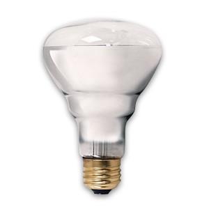 Reptile Basking Bulb 100 Watt